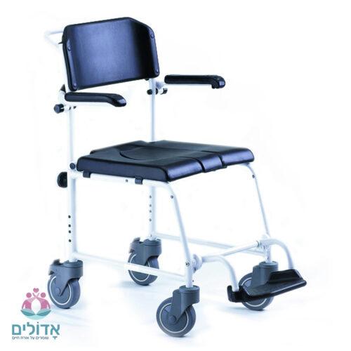 כסא-שירותים-ורחצה-עי-מלווה